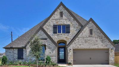 Tomball Single Family Home For Sale: 19022 Dublin Bay Court