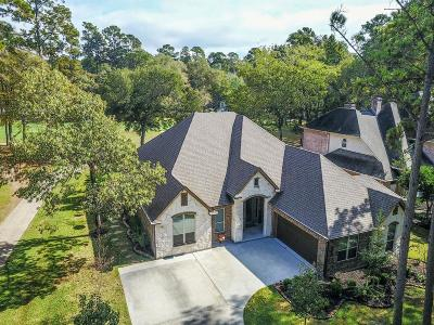 Montgomery Single Family Home For Sale: 3302 Lake Island Drive