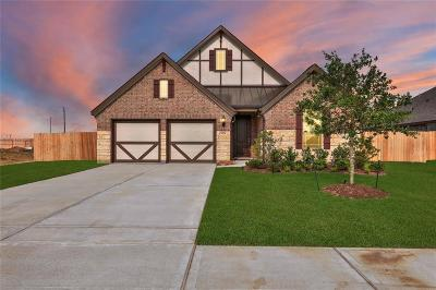 League City Single Family Home For Sale: 1306 Course View Drive
