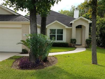 Montgomery Single Family Home For Sale: 216 Mesa View
