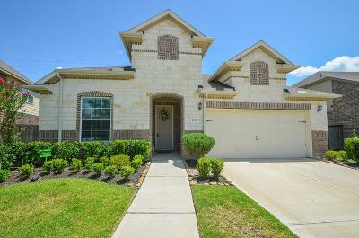 Pearland Single Family Home For Sale: 2007 Honey Meadow Lane