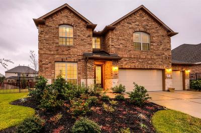 Tomball Single Family Home For Sale: 43 Wyatt Oaks Drive
