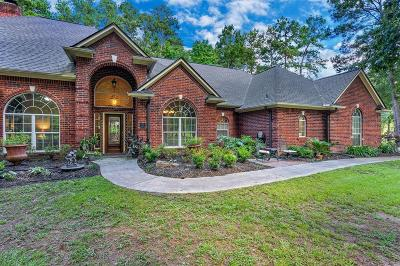 Huffman Single Family Home For Sale: 29202 Commons Forest Drive