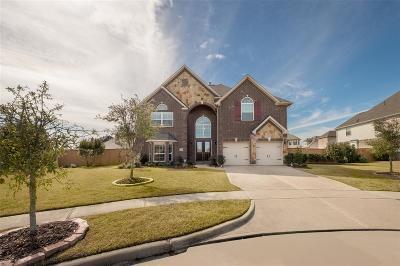 League City Single Family Home For Sale: 1313 Milazzo Lane
