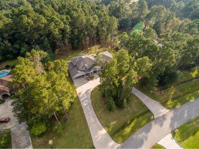 Spring Single Family Home For Sale: 4106 Tee Tree Court