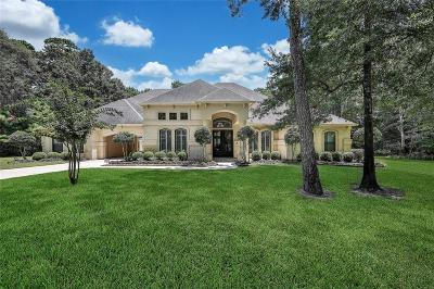 Spring Single Family Home For Sale: 28510 Waterbend Way