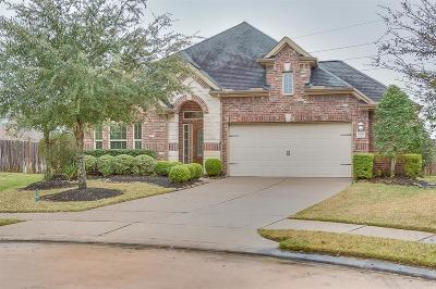 Firethorne Single Family Home For Sale: 2951 Fair Chase Drive