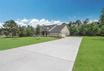Tomball Single Family Home For Sale: 12903 Mossy Shore
