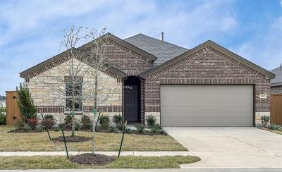 Balmoral Single Family Home For Sale: 15442 Paxton Woods Drive