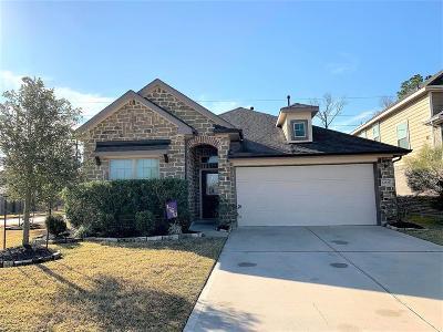 Eagle Springs Single Family Home For Sale: 12838 Madison Boulder Lane