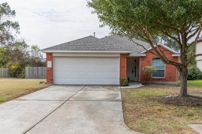 Tomball Single Family Home For Sale: 20331 Evening Primrose Lane