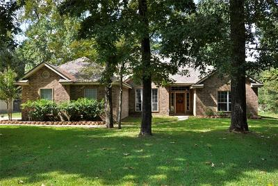 Magnolia Single Family Home For Sale: 303 McDaniel Drive