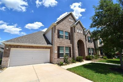Friendswood Single Family Home For Sale: 1128 Hickory Terrace