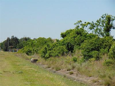 San Leon TX Residential Lots & Land For Sale: $49,995