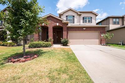 Katy Single Family Home For Sale: 21414 Piralta Ridge Lane