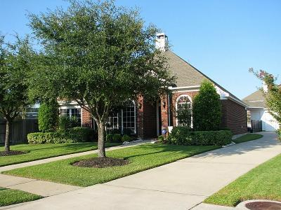 Houston Single Family Home For Sale: 8738 Distant Woods Drive