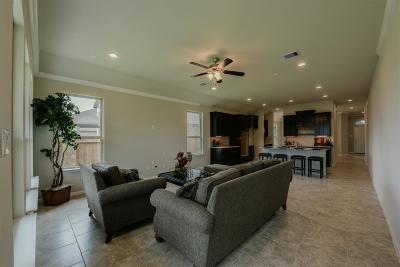 Rosenberg Single Family Home For Sale: 8818 Jamison Drive