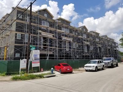 Houston Single Family Home For Sale: 4503 Maxie Street