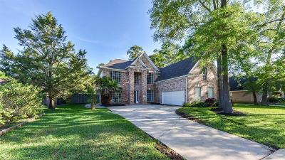 Baytown Single Family Home For Sale: 2925 Park Lane Drive