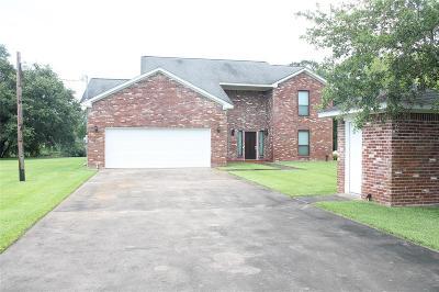 Brazoria Single Family Home For Sale: 351 County Road 416