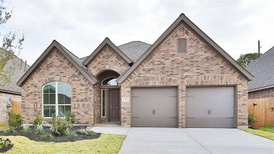 Pearland Single Family Home For Sale: 13207 Sage Meadow Lane