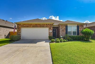 League City Single Family Home For Sale: 1607 Cavallo Pass Lane