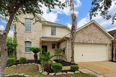 Houston Single Family Home For Sale: 10515 Kirksage Ct