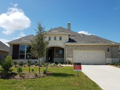 Katy Single Family Home For Sale: 6115 Verde Place Lane