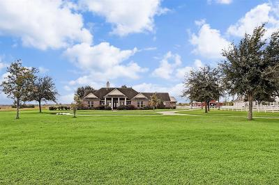 Katy Single Family Home For Sale: 26405 Stockdick School Road