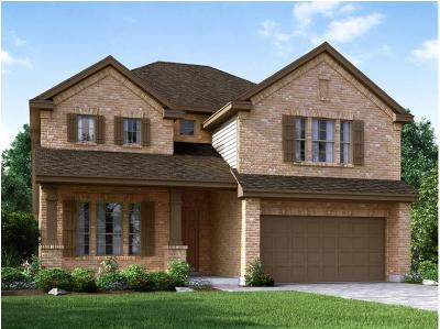 Fort Bend County Single Family Home For Sale: 2554 Shelly Lang Court