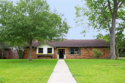 Friendswood Single Family Home For Sale: 202 Carey Lane