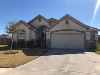 Texas City Single Family Home For Sale: 3204 Sunflower Drive