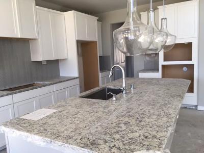 Fulshear Single Family Home For Sale: 28135 Long Mill Lane