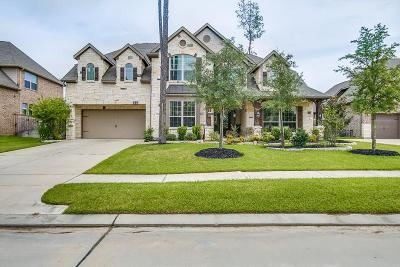 Tomball Single Family Home For Sale: 19010 Winding Atwood Lane