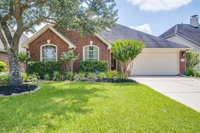 Manvel Single Family Home For Sale: 3619 Sunburst Drive