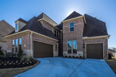 The Woodlands Single Family Home For Sale: 10 Argosy Bend