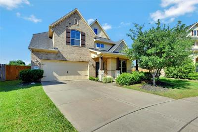 Houston Single Family Home For Sale: 2605 Hook Left Drive