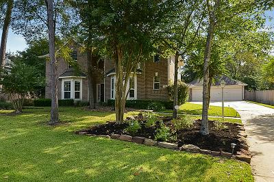 The Woodlands Single Family Home For Sale: 22 S Frosted Pond Drive