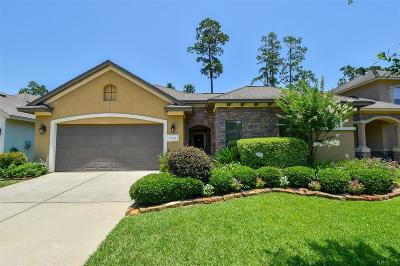 Spring Single Family Home For Sale: 25214 Arcane Court
