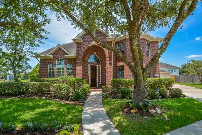 Sugar Land Single Family Home For Sale: 14118 Bracebridge Court