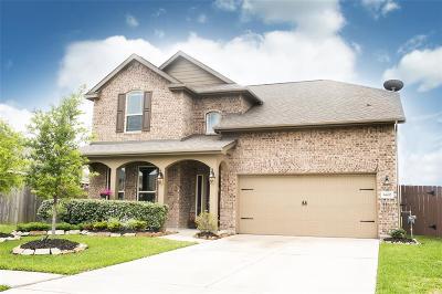 Rosenberg Single Family Home For Sale: 6802 Trinity Trail Lane