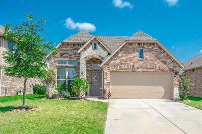 Humble Single Family Home For Sale: 13315 Davenport Hills Lane