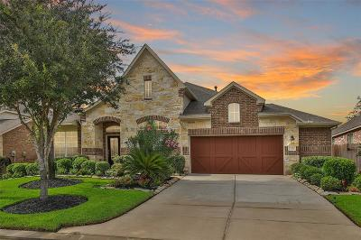 Tomball Single Family Home For Sale: 12310 Scherer Woods Court
