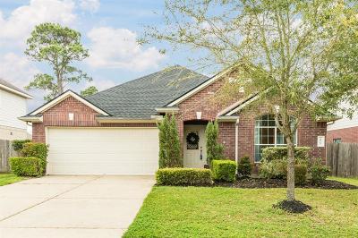 Pearland Single Family Home For Sale: 10117 Brookshore Lane