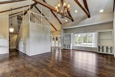 Houston Single Family Home For Sale: 10115 Lynbrook Hollow Street