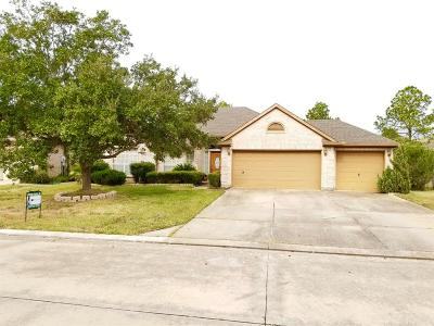Pearland Single Family Home For Sale: 3631 E Cedar Hollow Drive