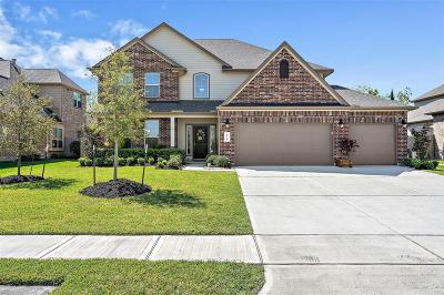 League City Single Family Home For Sale: 2938 Hawkins Creek Lane