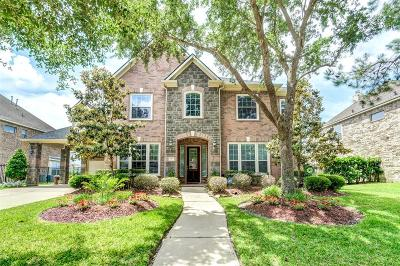 Single Family Home For Sale: 16539 Obsidian Drive