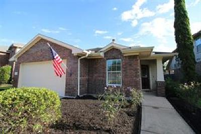 Dickinson Single Family Home For Sale: 146 Rustic Colony Lane