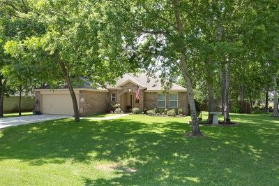 Willis Single Family Home For Sale: 13141 Lazy Lane